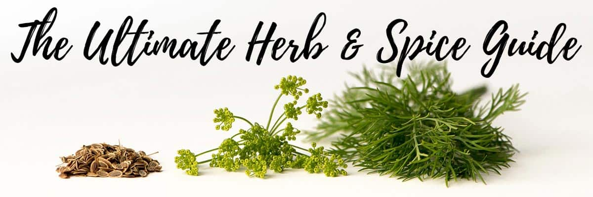 Header for Ultimate Herb & Spice Guide