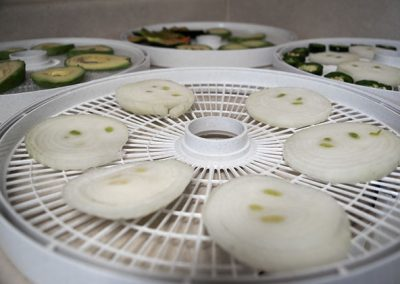 4 dehydrator trays with raw vegetables